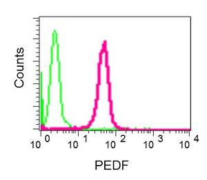 Flow Cytometry - Anti-PEDF antibody [EPR9826(B)] (ab157207)