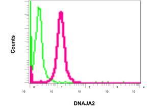 Flow Cytometry - Anti-DNAJA2 antibody [EPR11302(B)] (ab157216)
