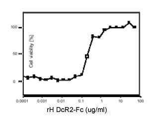 Functional Studies - DcR2 protein (Fc Chimera Active) (ab157262)