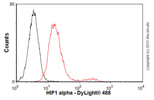 Flow Cytometry - Anti-HIF-1-alpha [mgc3] antibody (ab16066)