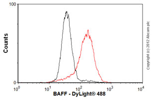 Flow Cytometry - Anti-BAFF antibody [Buffy 2] (ab16081)