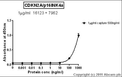 Sandwich ELISA - Anti-CDKN2A/p16INK4a  [DCS50.1] antibody (ab16123)