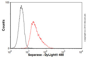 Flow Cytometry-Anti-Separase antibody [XJ11-1B12](ab16170)