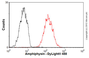 Flow Cytometry-Anti-Amphiphysin antibody [C14-23](ab16770)