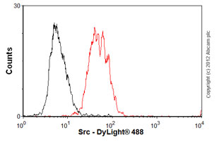 Flow Cytometry-Anti-Src antibody [Clone 327](ab16885)