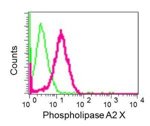 Flow Cytometry - Anti-Phospholipase A2 X antibody [EPR11202] (ab166634)