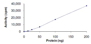 Functional Studies - Active human EHMT2/ G9A protein fragment (ab167966)
