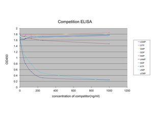 ELISA - Anti-cGMP antibody [EPR10355] (ab169753)