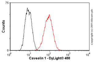 Flow Cytometry - Anti-Caveolin-1 [7C8] antibody (ab17052)
