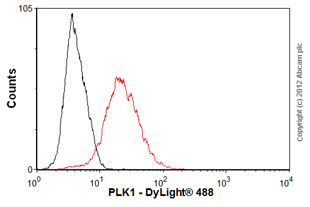 Flow Cytometry-Anti-PLK1 antibody [35-206](ab17056)