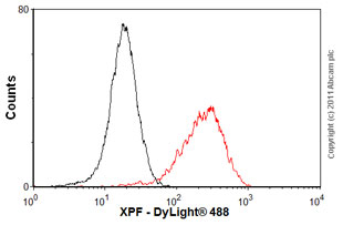 Flow Cytometry - Anti-XPF antibody [SPM228] (ab17798)