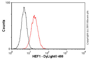 Flow Cytometry - HEF1 antibody [2G9] (ab18056)