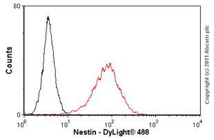 Flow Cytometry-Nestin antibody [2C1.3A11] - Neural Stem Cell Marker(ab18102)