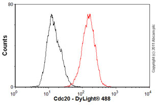 Flow Cytometry-Cdc20 antibody [BA8](ab18217)