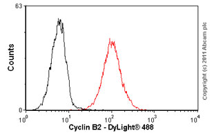 Flow Cytometry - Cyclin B2 antibody [X29.2] (ab18250)