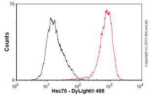 Flow Cytometry-Anti-Hsc70 antibody [1B5](ab19136)
