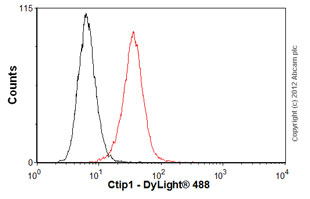 Flow Cytometry-Anti-Ctip1 antibody [18B12DE6] - ChIP Grade(ab19489)