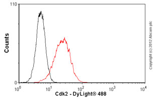 Flow Cytometry-Anti-Cdk2 antibody [2B6](ab2363)
