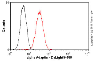 Flow Cytometry-alpha Adaptin antibody [AP6](ab2730)
