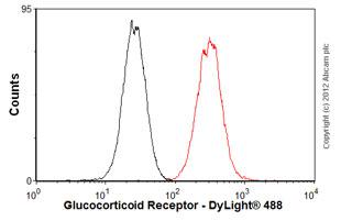 Flow Cytometry - Anti-Glucocorticoid Receptor antibody [BuGR2] (ab2768)