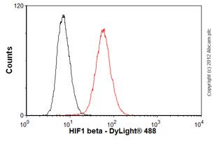 Flow Cytometry-Anti-HIF1 beta antibody [2B10](ab2771)