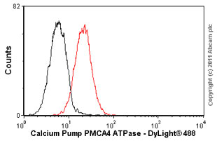 Flow Cytometry - Calcium Pump PMCA4 ATPase antibody [JA9] (ab2783)