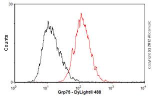 Flow Cytometry - Anti-Grp75 antibody [JG1] (ab2799)