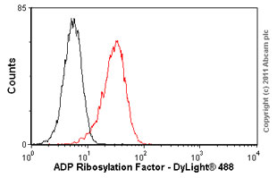 Flow Cytometry-ADP Ribosylation Factor antibody [1D9](ab2806)
