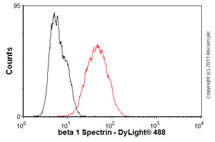 Flow Cytometry-Anti-beta 1 Spectrin antibody [4C3](ab2808)