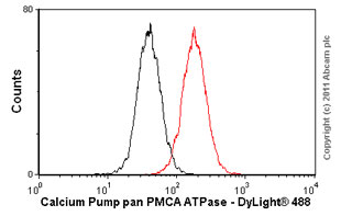 Flow Cytometry-Calcium Pump pan PMCA ATPase antibody [5F10](ab2825)