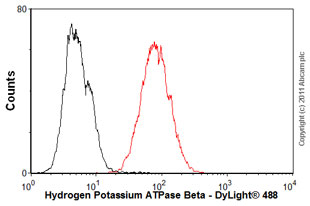 Flow Cytometry-Hydrogen Potassium ATPase Beta antibody [2G11](ab2866)
