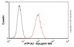 Flow Cytometry - Anti-ATP1A2 antibody [M7-PB-E9] (ab2871)