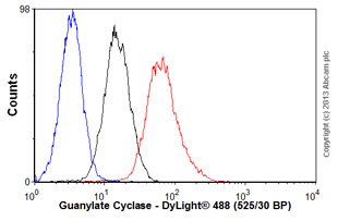 Flow Cytometry-Anti-Guanylate Cyclase antibody [GC25](ab20042)
