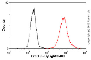 Flow Cytometry - ErbB 3 antibody [RTJ2] (ab20161)