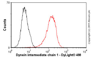 Flow Cytometry-Dynein intermediate chain 1 antibody [74.1](ab23905)
