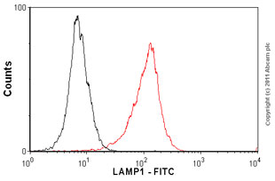 Flow Cytometry-Anti-LAMP1 antibody [H4A3] (FITC) - Lysosome Marker(ab25406)