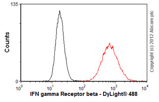 Flow Cytometry-Anti-IFN gamma Receptor beta antibody [MMHGR-2](ab25448)