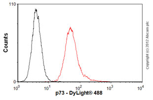 Flow Cytometry-Anti-p73 antibody [5B429](ab26123)