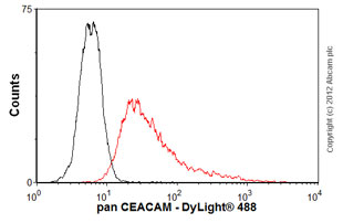 Flow Cytometry - Anti-pan CEACAM antibody [TET2] (ab26283)
