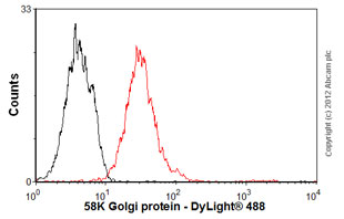 Flow Cytometry-Anti-58K Golgi protein antibody [58K-9] - Golgi Marker(ab27043)