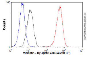 Flow Cytometry-Anti-Vimentin antibody [SP20], prediluted(ab27608)
