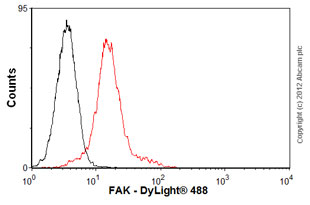 Flow Cytometry-Anti-FAK antibody [12G4](ab28152)