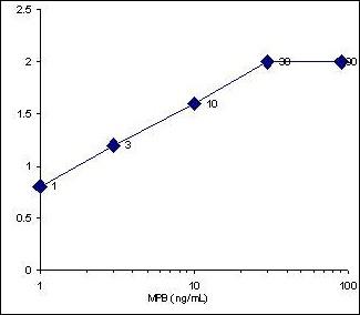 Sandwich ELISA - Myelin Basic Protein antibody (ab28541)