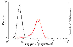 Flow Cytometry - Filaggrin antibody [FLG01] (ab3137)