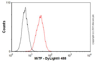 Flow Cytometry - Anti-MiTF antibody [D5] (ab3201)