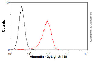Flow Cytometry-Anti-Vimentin antibody [VI-RE/1](ab3974)