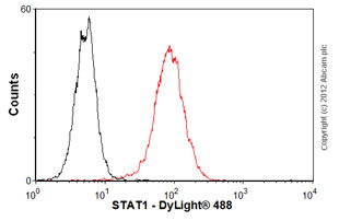 Flow Cytometry-Anti-STAT1 antibody [SM1](ab3987)
