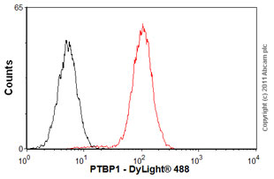 Flow Cytometry-Anti-PTBP1  antibody [SH54](ab30317)