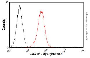 Flow Cytometry - Anti-Calnexin - ER membrane marker antibody [AF18] (ab31290)
