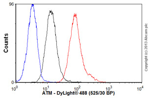 Flow Cytometry - Anti-ATM antibody [ATM 11G12] (ab31842)